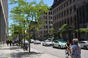 Downtown,31/2,one,bedrrom,Vieux ,Montreal,Downtown