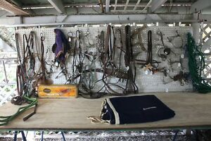 Assorted Horse Tack, etc.