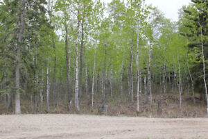 1.4 Acre Lake View Lot at Brightsand Lake! Build Your Dream Home