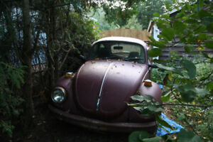 72 Super Beetle for parts only