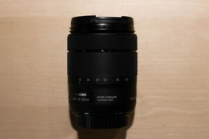 Canon EF-S 18-135mm f/3.5-5.6 IS USM (Nano)