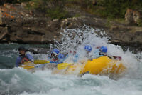 Driver/Trip Assistant for Chinook Rafting - Banff, AB (May-Sept)