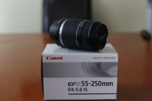 Canon EF-S 55-250 Zoom lens with IS (Image Stabilization)