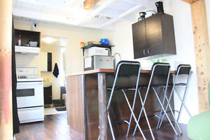 Beautiful, cool Totally renovated all inclusive student/coop 3bd