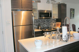 NDG 3 ½ +den semi-furnished Condo for rent - $1,225 per month