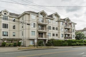 Extremely Rare 3-Bedroom Penthouse Condo!
