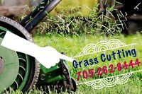 Lawn Care / Grass Cutting