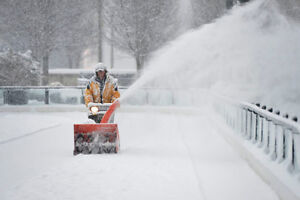 Travis's Snow Removal Fall Leaves Lawn Care Open Year Round Too Oakville / Halton Region Toronto (GTA) image 7