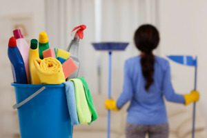 Professional and reliable HOUSE CLEANING LADY. BOOK NOW