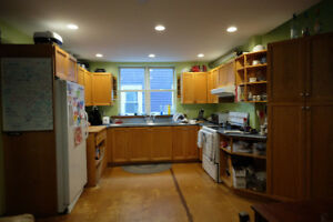 REDUCED PRICE - Kitchen Cabinets with Commercial Sink