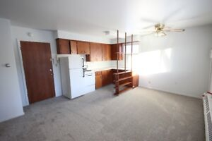 1 Bedroom Apartment Accross From General Hospital March 1