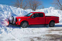 PROFESSIONAL SNOW REMOVAL & SALTING AT VERY LOW PRICES!!!