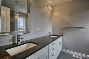 Bran New Home For rent London Ontario image 7