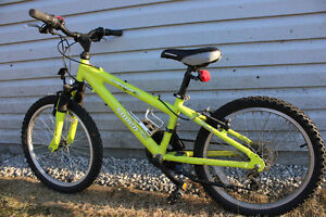 Norco Eliminator Kids Mountain Bike