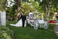 Wedding Packages starting at 750.00