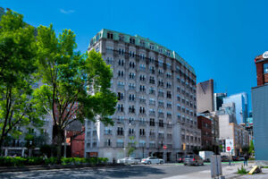 Gorgeous and Bright Condo in the Heart of Downtown
