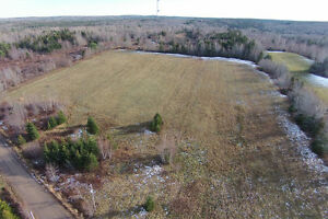 VIDEO: cleared acreage in West Inglisville (south of Paradise)