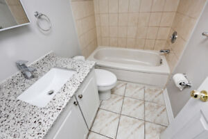 New 2 Bed 1 Wash Basement for Rent in Brampton ONLY $950!!!!