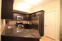 SOUTH TERWILLEGAR 2BED/2BATH  ALL  INCLUDES UTILITIES BRAND NEW