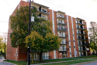1 Bdrm Apartment for rent available Oct 1st. 3461 Peter