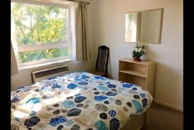 Great double room in Wimbledon!