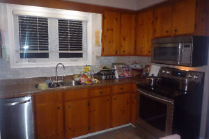 Free kitchen cabinets, sink and countertop