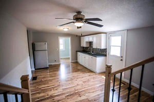 Completely renovated 4 bedroom house