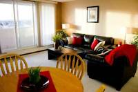 Checkmate - Furnished 1 Bed - Short Term Availabilities - SCR
