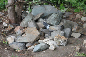 Rocks great for a rock garden or border