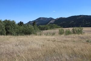 5.88 ACRES IN CROWSNEST PASS
