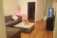 Clean, Big plateau Montreal apartment with room for rent !