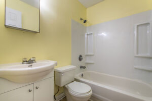 OPEN HOUSE---Amazing First home or Investment St. John's Newfoundland image 7