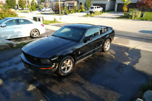2006 Ford mustang - Pony Edition