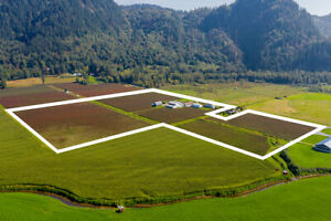 FOR SALE!$ $4,200,000 40.91 Acres • House & Blueberry Farm