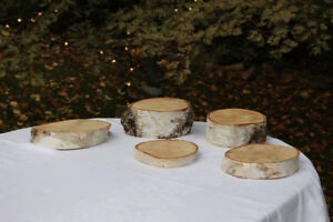 Wedding Birch Disks, Logs, and Signs