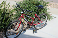 Red and black bike for sale
