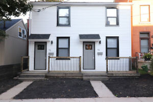 Newly renovated 2 Bedroom 1 Bath semi for rent in Corktown.