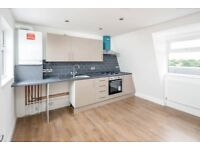Great 1 Bedroom Flat with Roof Terrace, Hackney E5