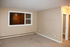 One Bedroom West End Apartment Condo for Rent