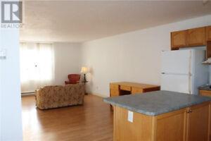 3 bedroom side by side duplex for rent November 1