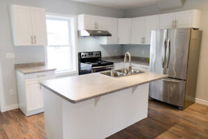 Fully Renovated 2 Bedroom - Available Immediately