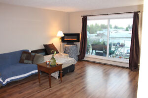 Beautiful 1 Bedroom Condo  in great area. Available Aug 1