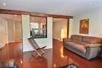 Great appartment ideal for young professional