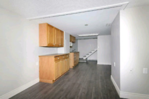 Large 2 Bedroom Apartment in Welland