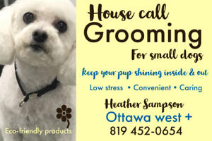 """House Call grooming for """"small"""" dogs"""