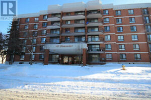 14 Greenview Dr. Newly renovated 2bdrm condo available June 1st