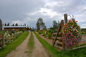 Sunshine Ranch Weddings and Special Events Williams Lake Cariboo Area image 7