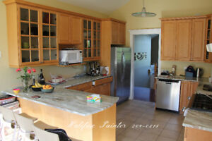 Change the color on your Kitchen Cabinets