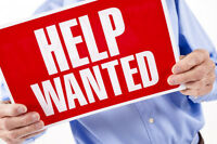 HELPER NEEDED FROM 8AM TO 3PM IN KIRKLAND TOMORROW 24.04.2017