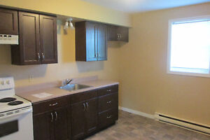 Modern One Bedroom Apartment in Downtown Antigonish